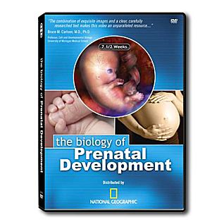 Biology of Prenatal Development